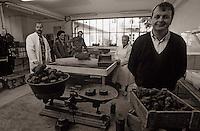 Europe/France/Midi-Pyrénées/46/Lot/Vallée du Lot/Cahors: Entreprise Pebeyre - Pierre-Jean Pebeyre négociant en truffes