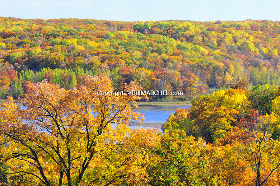 00440-010.17 Fall Color: Mix of mostly oak, aspen and birch are in peak of color.  Small lake in background. Mix of wildlife habitat. Brilliant, colorful.