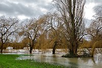 26 December 2020: The River Nene at Thrapston, Northamptonshire, bursts its banks after heavy rain fall caused by Storm Bella.