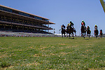 JUL 24,2014:The stand and horses on the turf track at Del Mar in Del Mar,CA. Kazushi Ishida/ESW/CSM