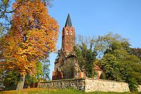 Grumsiner Forst, Brandenburg, Germany