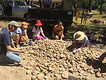 volunteers moving the river rocks into place under where the bridge will go