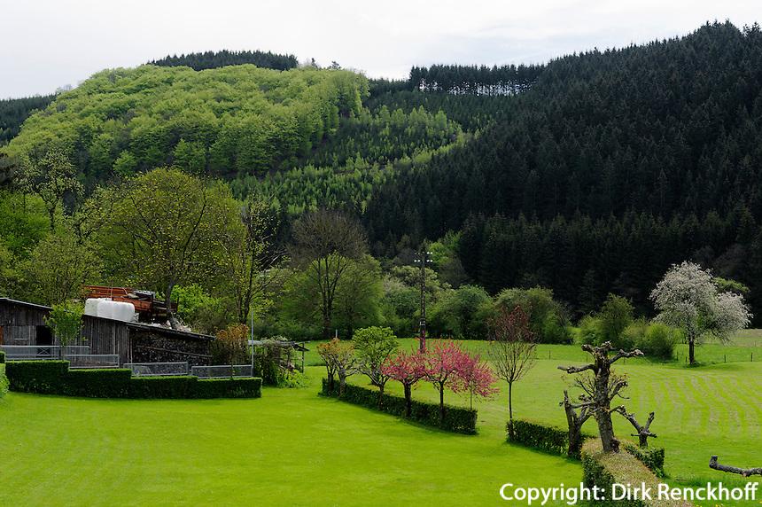 Tal der Our in Ouren, Wallonien, Belgien