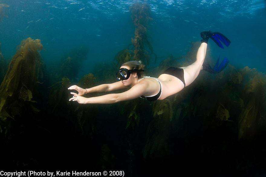 Jacalyn Pelloni models for an underwater photograph in the waters of the Santa Barbara Island Sea Lion Rookery, CA.  (Photo by, Karie Henderson © 2008)