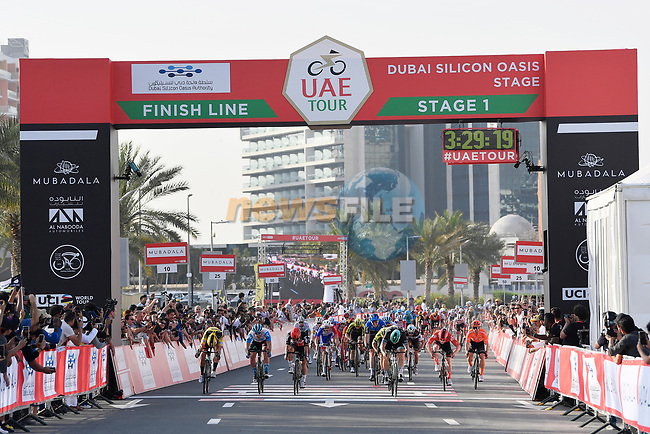 Pascal Ackermann (GER) Bora-Hansgrohe wins Stage 1 of the UAE Tour 2020 running 148km from The Pointe to Dubai Silicon Oasis, Dubai. 23rd February 2020.<br /> Picture: LaPresse/Fabio Ferrari | Cyclefile<br /> <br /> All photos usage must carry mandatory copyright credit (© Cyclefile | LaPresse/Fabio Ferrari)