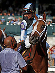"""October 07, 2018 : #10 Current and jockey Jose Ortiz win the 28th running of The Dixiana Bourbon (Grade 3) $250,000 """"Win and You're In Breeders' Cup Juvenile Turf Division"""" for trainer Todd Pletcher and owner Eclipse Thoroughbred and Robert LaPenta at Keeneland Race Course on October 07, 2018 in Lexington, KY.  Candice Chavez/ESW/CSM"""