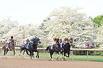 April 12, 2014:  The Oaklawn Park Handicap during the Arkansas Derby at Oaklawn Park in Hot Springs, AR. Zoie Clift/ESW/CSM