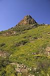 Wadi Hamam and Mount Nitai