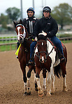 April 20, 2015 Kentucky Derby and Oaks contenders at Churchill Downs.  Danzig Moon galloped at Churchill Downs with exercise rider William Cano.  Owner John Oxley, trainer Mark Casse.  By Malibu Moon x Leaveminthedust (Danzig) ©Mary M. Meek/ESW/CSM