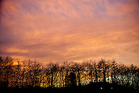 Friday 31 January 2014<br /> Pictured: Red Sky over Carmarthen Wales ahead of Severe weather warnings. <br /> Re: Severe weather warnings are issued accross Wales and England