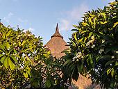 Flic en Flac, Mauritius. La Pirogue tourist resort. Traditional thatch roof and Frangipani trees.