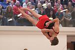 IoMCYG Gymnastics