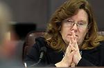 Nevada Legislature - budget subcommittee 020211