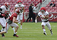 Arkansas running back Devin Bush (right) carries the ball Saturday, April 3, 2021, during a scrimmage at Razorback Stadium in Fayetteville. Visit nwaonline.com/210404Daily/ for today's photo gallery. <br /> (NWA Democrat-Gazette/Andy Shupe)