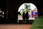 DEL MAR, CA - NOVEMBER 02: Horses make their way through the tunnel during morning workouts at Del Mar Thoroughbred Club on November 2, 2017 in Del Mar, California. (Photo by Michael McInally/Eclipse Sportswire/Breeders Cup)