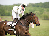 An ebullient Xavier Aizpuru shakes his fist aboard Star For Tina at the wire at the Virginia Gold Cup races.