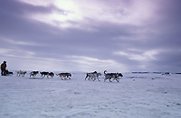 Daniel Vetsch on Ice Near Koyuk