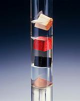 DENSITY COLUMN<br /> Demonstrating Immiscibility & Phase Difference<br /> (top to bottom) balsa 0.1g/cm³, hexane 0.66g/cm³, padauk 0.86g/cm³, water 1.00g/cm³, ebony 1.2g/cm³, chloroform 1.48g/cm³, copper 8.94g/cm³, mercury 13.6g/cm³.  Density is the mass of a sample of matter divided by its volume.