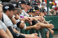 South Carolina's bench watches in Game 3 of the NCAA Division One Men's College World Series on Sunday June 20th, 2010 at Johnny Rosenblatt Stadium in Omaha, Nebraska.  (Photo by AJ Woolley / Four Seam Images)