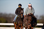 November 2, 2020: Dayoutoftheoffice, trained by trainer Timothy E. Hamm, exercises in preparation for the Breeders' Cup Juvenile Fillies at Keeneland Racetrack in Lexington, Kentucky on November 2, 2020. Alex Evers/Eclipse Sportswire/Breeders Cup