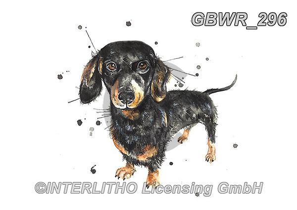 Simon, REALISTIC ANIMALS, REALISTISCHE TIERE, ANIMALES REALISTICOS, innovativ, paintings+++++KatherineWilliams_SplatterSausage,GBWR296,#a#, EVERYDAY