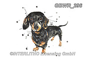 Simon, REALISTIC ANIMALS, REALISTISCHE TIERE, ANIMALES REALISTICOS, innovativ, paintings+++++KatherineWilliams_SplatterSausage,GBWR296,#a#, EVERYDAY