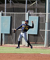 Carlos Rodriguez - 2020 AIL Brewers (Bill Mitchell)