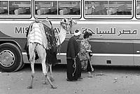 - Egitto, Il Cairo, ottobre 1986, turisti alle piramidi di Giza<br /> <br /> - Egypt, Cairo, October 1986, tourists to the pyramids of Giza