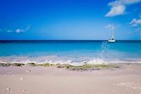Pink Beach or Witte Pan, Bonaire Netherland Antilles (Dutch ABC Islands) (Caribbean, Atlantic)
