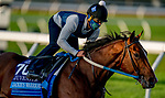 November 1, 2020: Jackie's Warrior, trained by trainer Steven M. Asmussen, exercises in preparation for the Breeders' Cup Juvenile at Keeneland Racetrack in Lexington, Kentucky on November 1, 2020. Scott Serio/Eclipse Sportswire/Breeders Cup /CSM