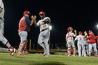 Palm Beach Cardinals outfielder Starlin Rodriguez (12) high fives catcher Jesus Montero (55) after a game against the Bradenton Marauders on April 9, 2014 at McKechnie Field in Bradenton, Florida.  Palm Beach defeated Bradenton 3-1.  (Mike Janes/Four Seam Images)
