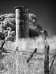 Jack London State Historic Park near Glen Ellen, California on the eastern slope of Sonoma Mountain.