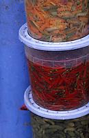 Afrique/Maghreb/Maroc/El-Jadida : Dans les souks - Détail d'un étal de légumes confits