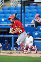 Palm Beach Cardinals outfielder Collin Radack (28) at bat during the first game of a doubleheader against the Dunedin Blue Jays on August 2, 2015 at Florida Auto Exchange Stadium in Dunedin, Florida.  Palm Beach defeated Dunedin 4-1.  (Mike Janes/Four Seam Images)