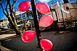 100212_Southport Diana Lens