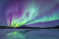 Aurora borealis swirl in the night sky above the Brooks Range and reflect in a pool of water, Alaska
