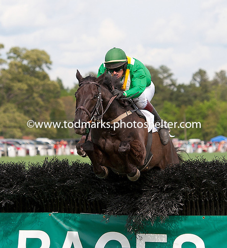 A head on shot of Black Jack Blues over the last in the Carolina Cup.