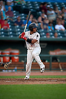 Great Lakes Loons Jair Camargo (21) at bat during a Midwest League game against the Clinton LumberKings on July 19, 2019 at Dow Diamond in Midland, Michigan.  Clinton defeated Great Lakes 3-2.  (Mike Janes/Four Seam Images)