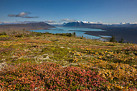 Overview of Naknek lake and the Kejulik mountains from Dumpling mountain, Katmai National Park, Alaska.