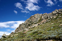 Granite Outcrop in the Snowy Mountains, High Country