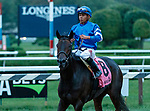 Lady Montdore (no. 8) returns after winning the Saranac Stakes (Grade 2), Sep. 1, 2018 at the Saratoga Race Course, Saratoga Springs, NY.  Ridden by Manuel Franco, and trained by Thomas Albertrani, Lady Montdore finished 2 1/4 lengths in front of Santa Monica (No. 5).  (Bruce Dudek/Eclipse Sportswire)