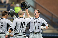 Oakland Golden Grizzlies outfielder Tyler Pagano (8) crosses home plate after hitting a home run against the Michigan Wolverines on May 17, 2016 at Ray Fisher Stadium in Ann Arbor, Michigan. Oakland defeated Michigan 6-5 in 10 innings. (Andrew Woolley/Four Seam Images)