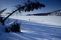 R.Swenson on Yukon Between Eagle Island & Kaltag