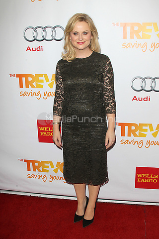 LOS ANGELES, CA - DECEMBER 02: Amy Poehler at 'Trevor Live' honoring Katy Perry and Audi of America for The Trevor Project held at The Hollywood Palladium on December 2, 2012 in Los Angeles, California. Credit: mpi21/MediaPunch Inc.