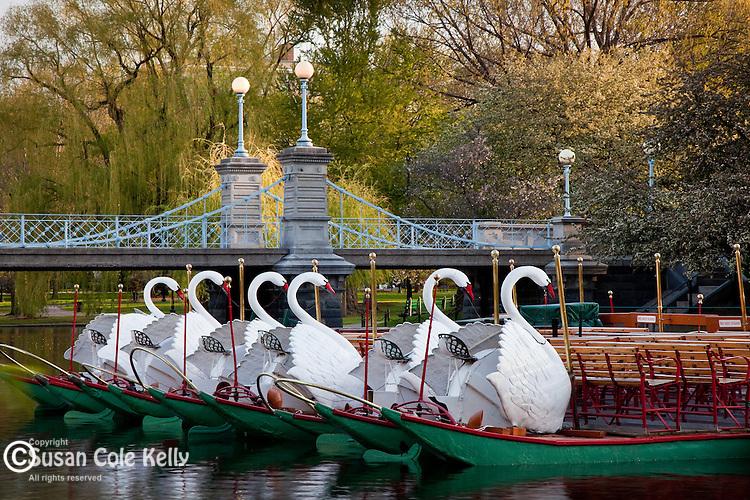 Swan boats and the Victorian bridge in the Boston Public Garden, Back Bay, Boston, MA, USA