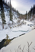 A team mushees along Dalzell Creek in the Dalzell Gorge on the trail between Rainy Pass summit and Rohn during the 2010 Iditarod, Southcentral Alaska