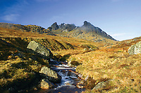 The Cobbler (Ben Arthur) above Arrochar, Arrochar Alps, Loch Lomond and the Trossachs National Park, Argyll & Bute<br /> <br /> Copyright www.scottishhorizons.co.uk/Keith Fergus 2011 All Rights Reserved