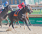 November 28, 2020: Silvia Q, trained by Philip Bauer and ridden by Chris Landeros; wins Race 2, maiden special weight, at Churchill Downs in Louisville, Kentucky on November 28 2020. Jessica Morgan/Eclipse Sportswire.