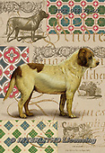 Isabella, REALISTIC ANIMALS, REALISTISCHE TIERE, ANIMALES REALISTICOS, paintings+++++,ITKE066172-LC,#a#, EVERYDAY ,dogs ,collage