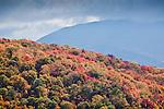 Fall foliage at Kinsman Notch, White Mountain National Forest, NH
